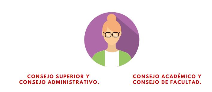 https://administrativa.repo.fitec.edu.co/index.php/frontend/files/get/elecciones/Captura2.JPG